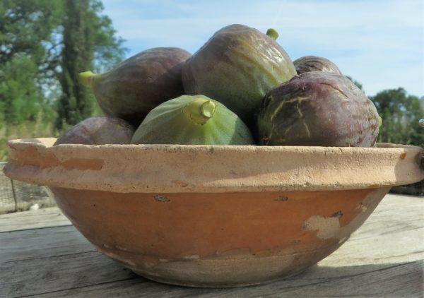 des figues à déguster